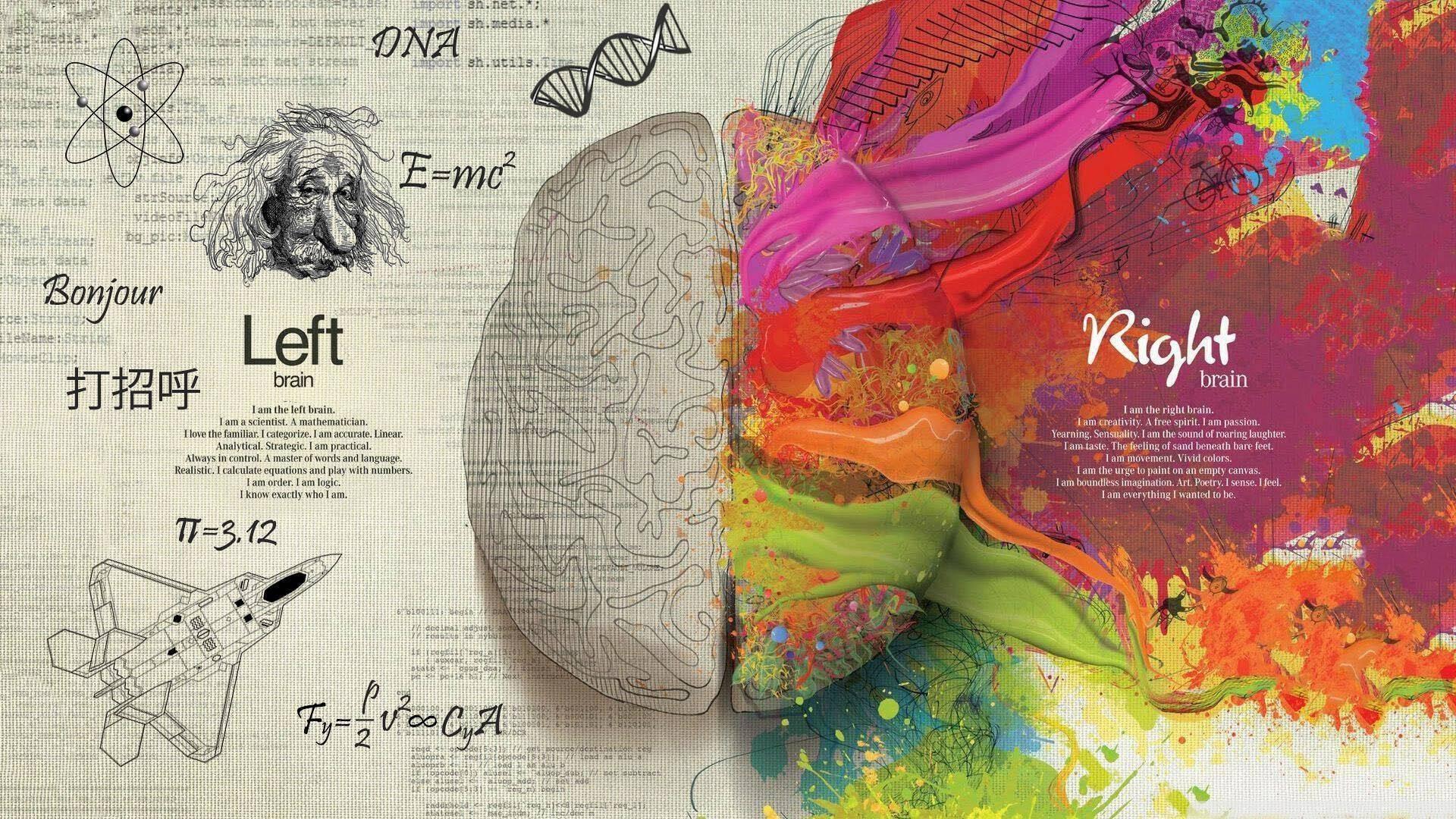 Αποτέλεσμα εικόνας για γλώσσα και εγκέφαλος