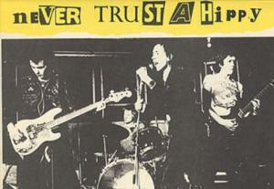 Sex-Pistols-Never-Trust-A-Hip- ph 2