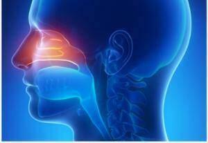 riniko-diafragma